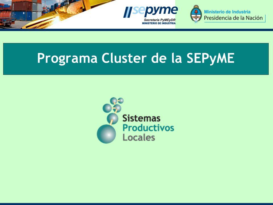 Programa Cluster de la SEPyME