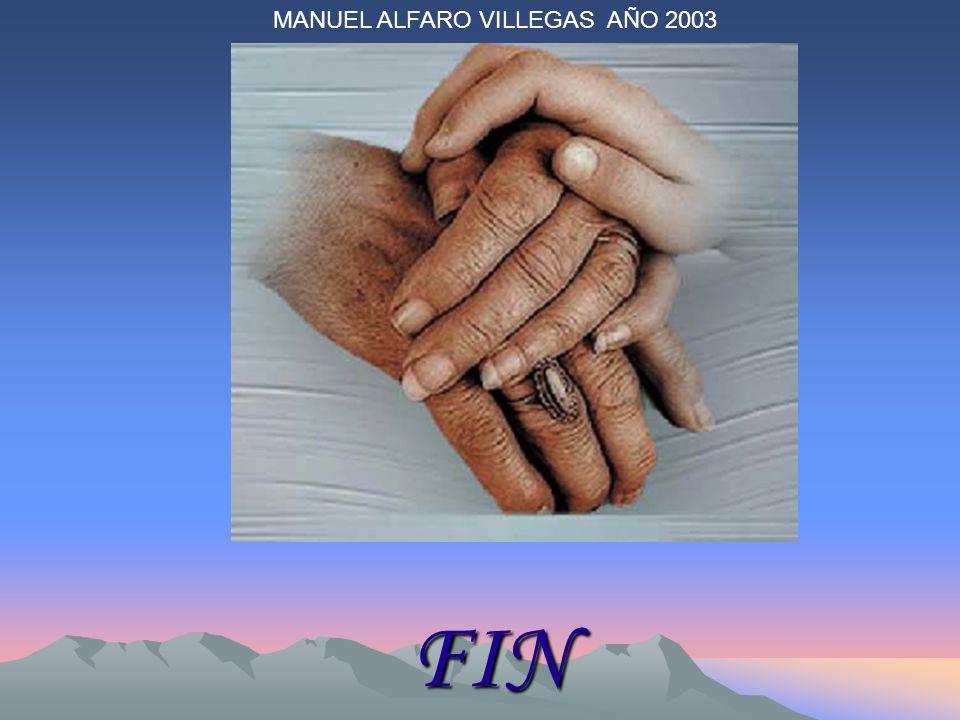 FIN MANUEL ALFARO VILLEGAS AÑO 2003