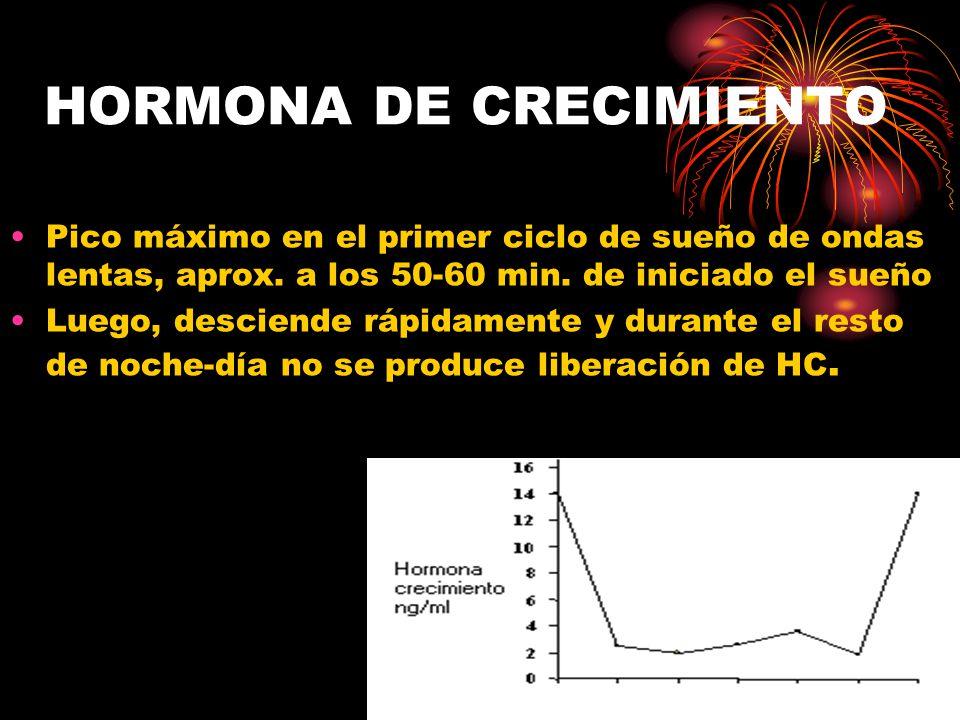 HORMONA DE CRECIMIENTO Pico máximo en el primer ciclo de sueño de ondas lentas, aprox.