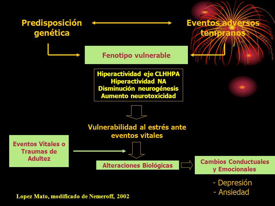 Fenotipo vulnerable Hiperactividad eje CLHHPA Hiperactividad NA Disminución neurogénesis Aumento neurotoxicidad Eventos adversos tempranos Vulnerabilidad al estrés ante eventos vitales Alteraciones Biológicas Cambios Conductuales y Emocionales - Depresión - Ansiedad Eventos Vitales o Traumas de Adultez Predisposición genética Lopez Mato, modificado de Nemeroff, 2002