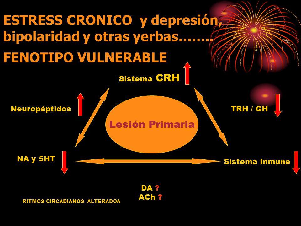 ESTRESS CRONICO y depresión, bipolaridad y otras yerbas……..