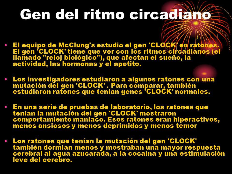 Gen del ritmo circadiano El equipo de McClung s estudio el gen CLOCK en ratones.