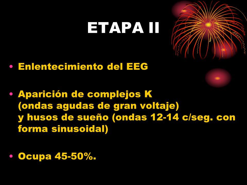 ETAPA II Enlentecimiento del EEG Aparición de complejos K (ondas agudas de gran voltaje) y husos de sueño (ondas 12-14 c/seg.