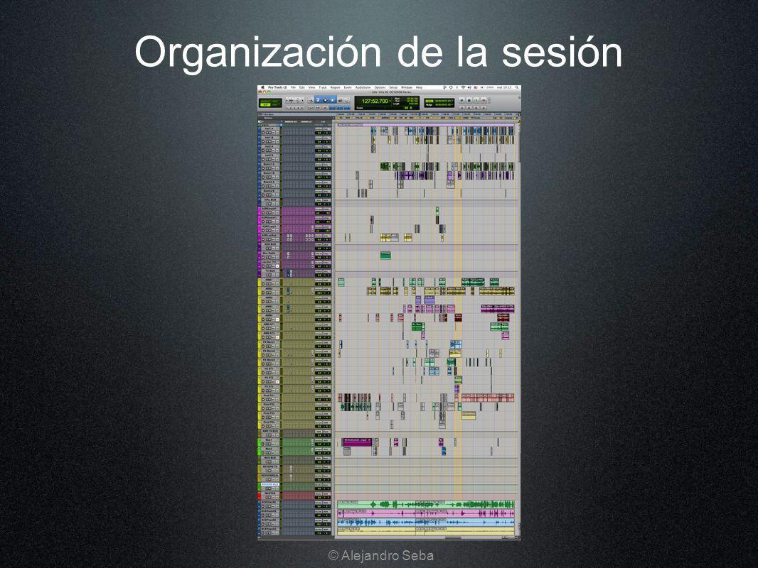 Organización de la sesión © Alejandro Seba