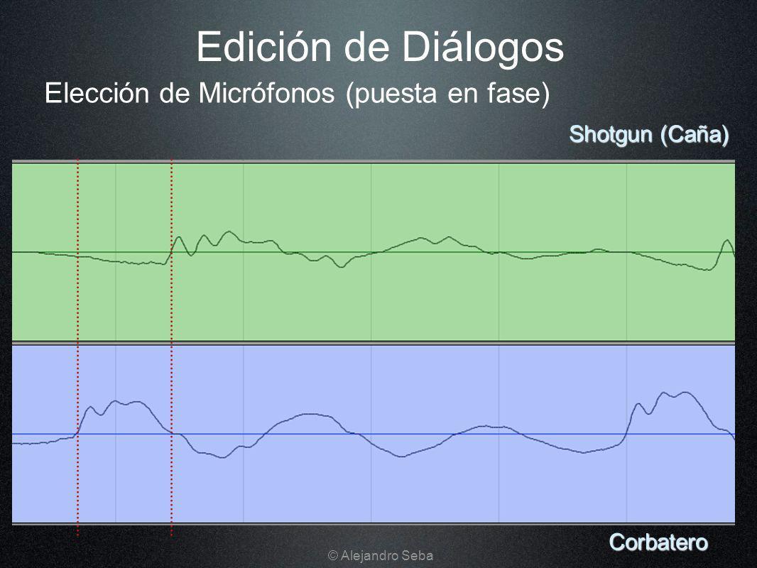 Elección de Micrófonos (puesta en fase) Edición de Diálogos Corbatero Shotgun (Caña) © Alejandro Seba