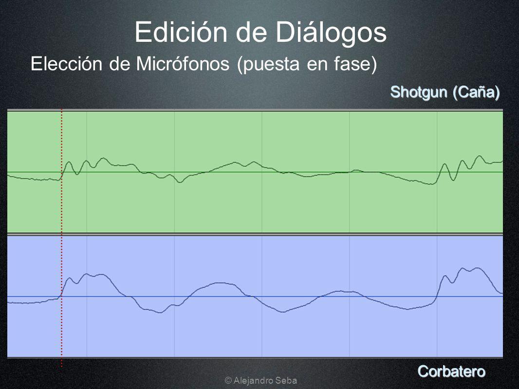 Edición de Diálogos Corbatero Shotgun (Caña) Elección de Micrófonos (puesta en fase) © Alejandro Seba