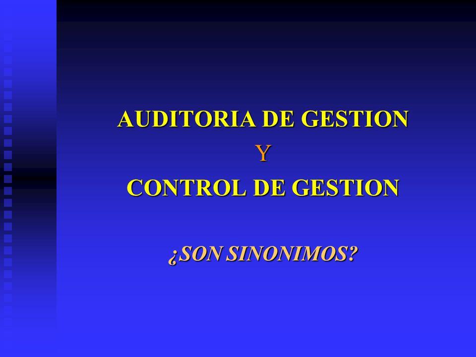 AUDITORIA DE GESTION Y CONTROL DE GESTION ¿SON SINONIMOS?