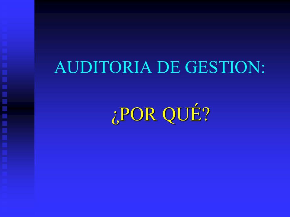 AUDITORIA DE GESTION: ¿POR QUÉ?