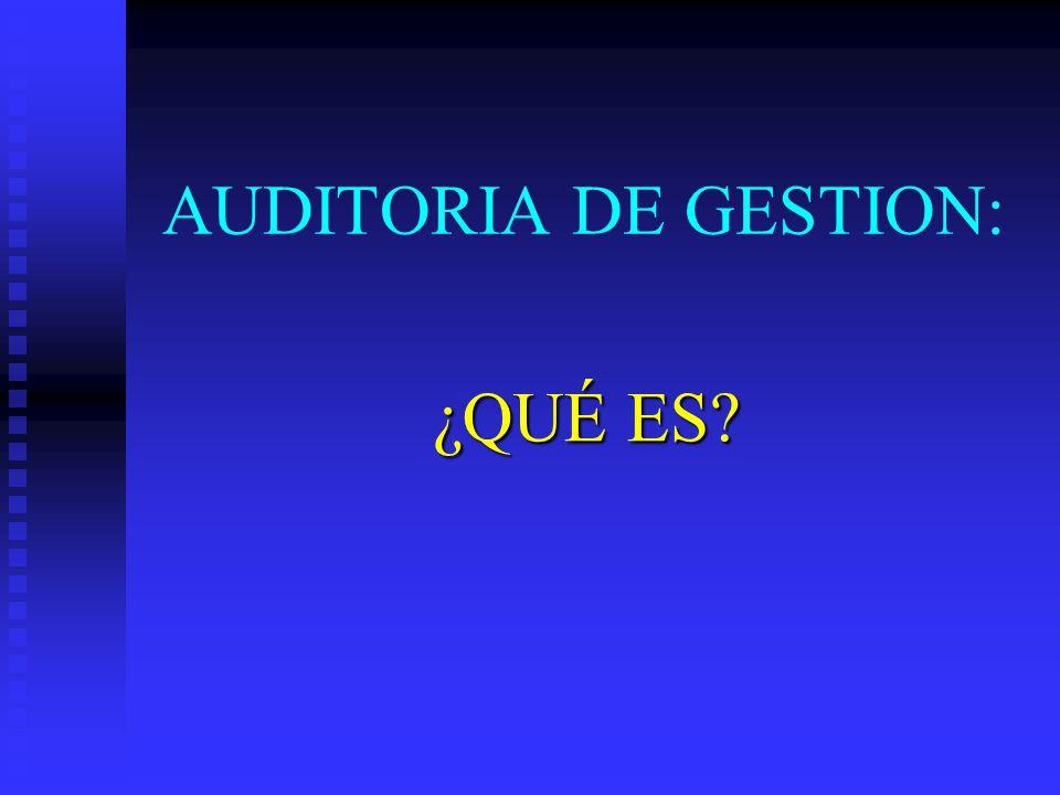 AUDITORIA DE GESTION: ¿QUÉ ES?