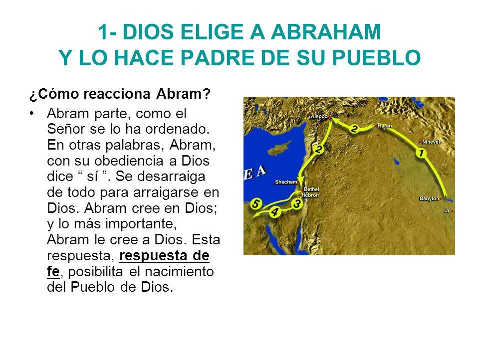 1- DIOS ELIGE A ABRAHAM Y LO HACE PADRE DE SU PUEBLO ¿Cómo reacciona Abram.