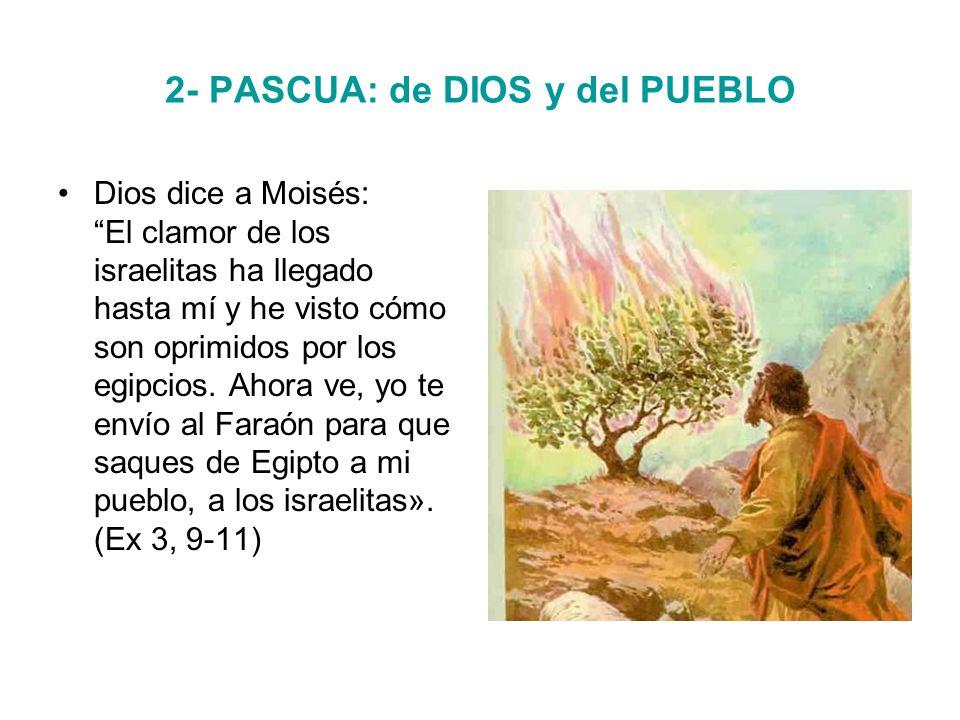 2- PASCUA: de DIOS y del PUEBLO Dios dice a Moisés: El clamor de los israelitas ha llegado hasta mí y he visto cómo son oprimidos por los egipcios.