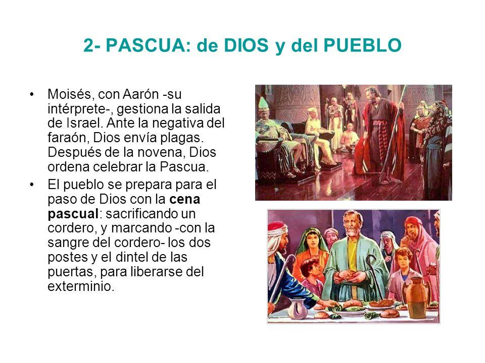 2- PASCUA: de DIOS y del PUEBLO Moisés, con Aarón -su intérprete-, gestiona la salida de Israel.