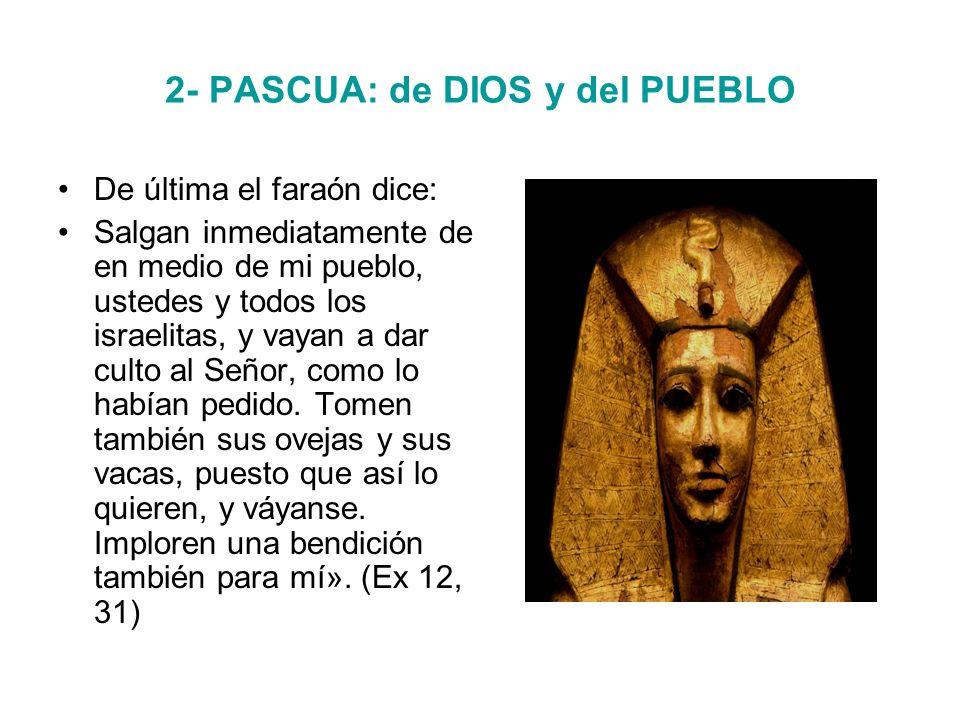 2- PASCUA: de DIOS y del PUEBLO De última el faraón dice: Salgan inmediatamente de en medio de mi pueblo, ustedes y todos los israelitas, y vayan a dar culto al Señor, como lo habían pedido.