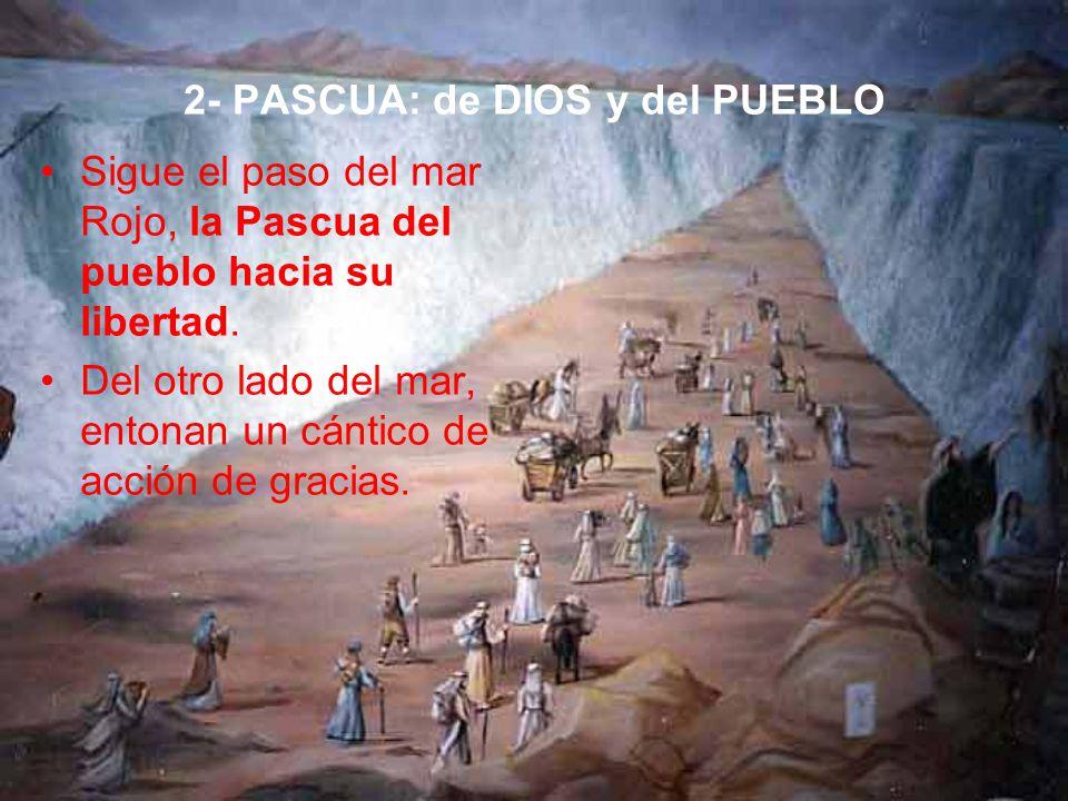 2- PASCUA: de DIOS y del PUEBLO Sigue el paso del mar Rojo, la Pascua del pueblo hacia su libertad.