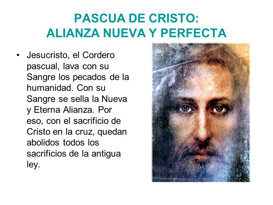 Jesucristo, el Cordero pascual, lava con su Sangre los pecados de la humanidad.