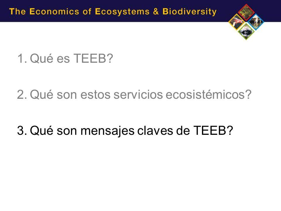 1.Qué es TEEB? 2.Qué son estos servicios ecosistémicos? 3.Qué son mensajes claves de TEEB?