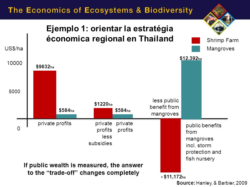 Shrimp Farm private profits less subsidies less public benefit from mangroves public benefits from mangroves incl.