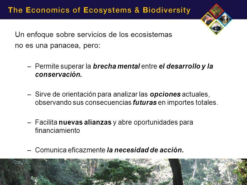 Un enfoque sobre servicios de los ecosistemas no es una panacea, pero: –Permite superar la brecha mental entre el desarrollo y la conservación.