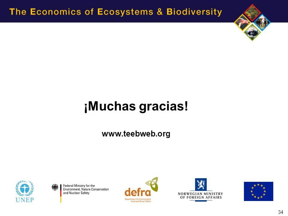 ¡Muchas gracias! www.teebweb.org 34