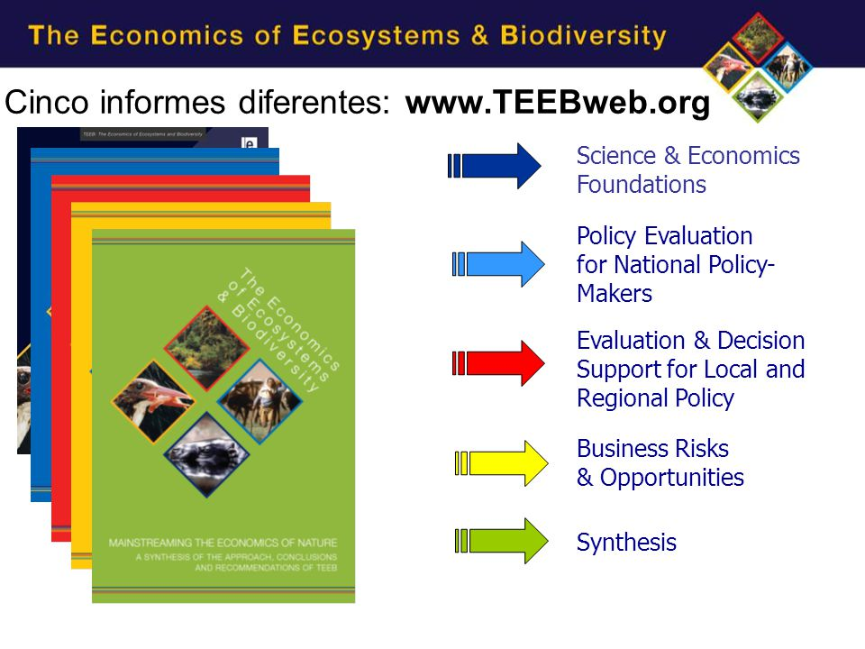 Cinco informes diferentes: www.TEEBweb.org Synthesis Business Risks & Opportunities Evaluation & Decision Support for Local and Regional Policy Policy Evaluation for National Policy- Makers Science & Economics Foundations