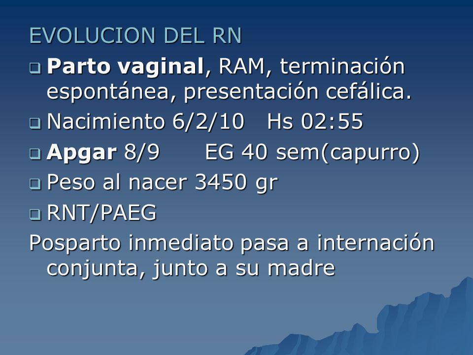 EVOLUCION DEL RN Parto vaginal, RAM, terminación espontánea, presentación cefálica. Parto vaginal, RAM, terminación espontánea, presentación cefálica.