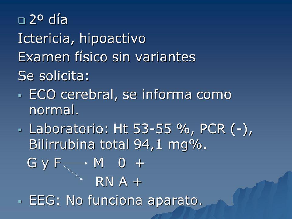 2º día 2º día Ictericia, hipoactivo Examen físico sin variantes Se solicita: ECO cerebral, se informa como normal. ECO cerebral, se informa como norma