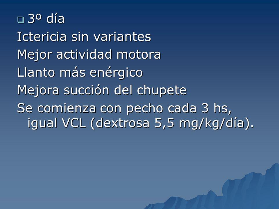 3º día 3º día Ictericia sin variantes Mejor actividad motora Llanto más enérgico Mejora succión del chupete Se comienza con pecho cada 3 hs, igual VCL