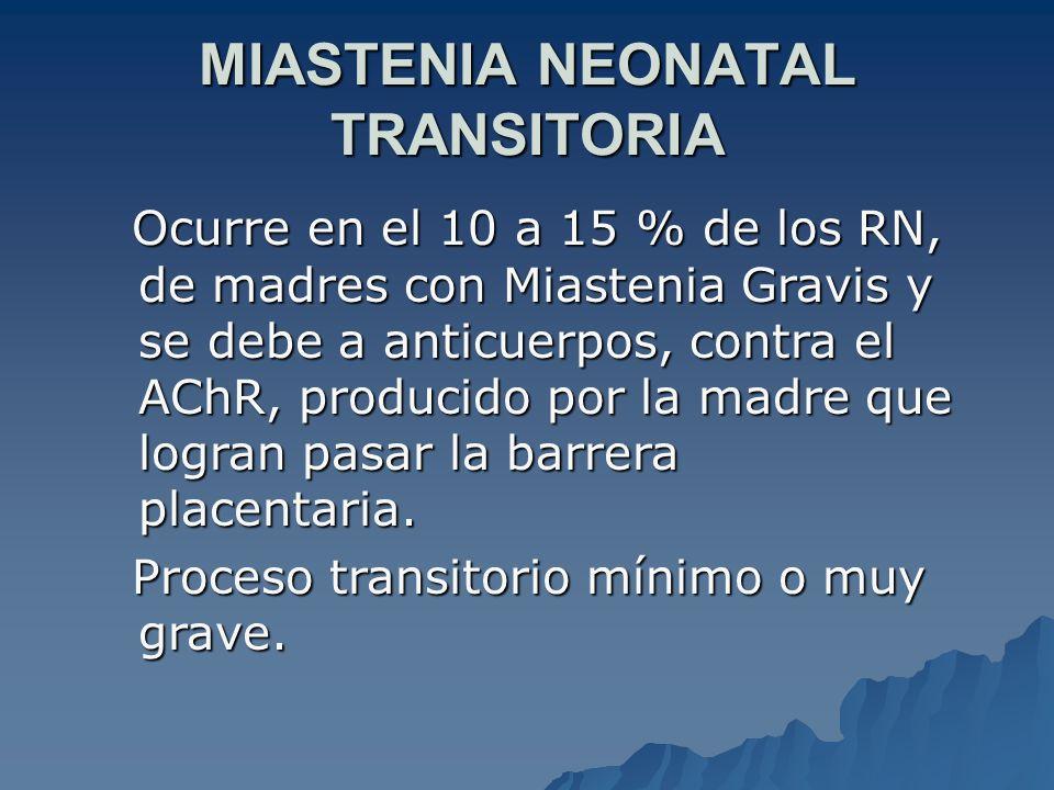 MIASTENIA NEONATAL TRANSITORIA Ocurre en el 10 a 15 % de los RN, de madres con Miastenia Gravis y se debe a anticuerpos, contra el AChR, producido por