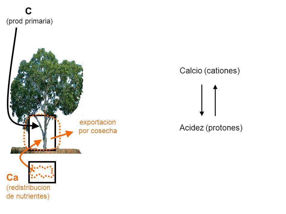 C (prod primaria) Ca (redistribucion de nutrientes) Calcio (cationes) Acidez (protones) exportacion por cosecha