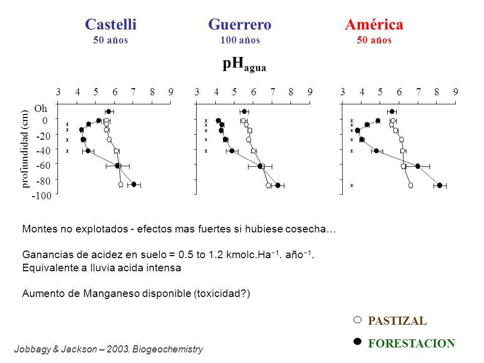 pH agua Castelli 50 años Guerrero 100 años América 50 años -100 -80 -60 -40 -20 0 Oh 345678934567893456789 profiundidad (cm) FORESTACION PASTIZAL Montes no explotados - efectos mas fuertes si hubiese cosecha… Ganancias de acidez en suelo = 0.5 to 1.2 kmolc.Ha 1.