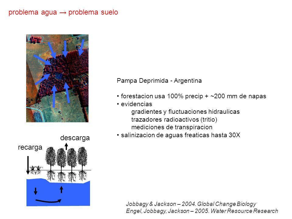 recarga descarga Pampa Deprimida - Argentina forestacion usa 100% precip + ~200 mm de napas evidencias gradientes y fluctuaciones hidraulicas trazadores radioactivos (tritio) mediciones de transpiracion salinizacion de aguas freaticas hasta 30X problema agua problema suelo Jobbagy & Jackson – 2004.