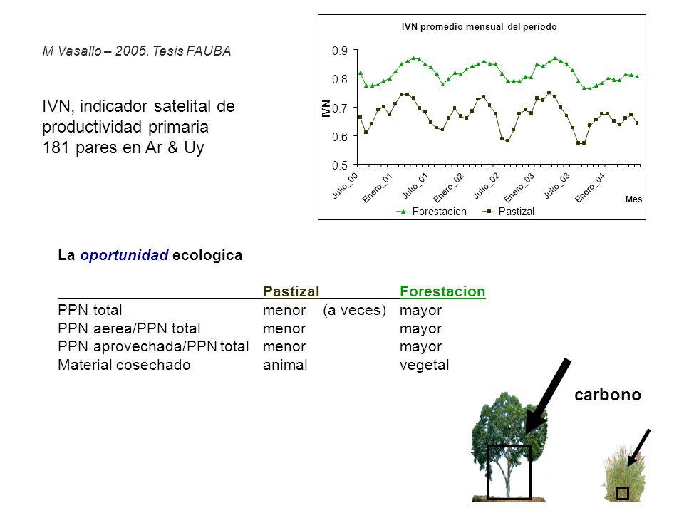 El proceso Pastizal Forestacion Pinos y Eucalitpus (rapido crecimiento) aumento 3X 1990-2000 en mercosur 0.7 Millones Ha en ROU El ambito Pastizales remanentes de Ar-Br-Uy - tierras no cultivadas (pendiente, rocosidad, inundacion, etc) - abundante precipitacion (alta produccion primaria neta -PPN-) La oportunidad ecologica PastizalForestacion PPN totalmenor (a veces)mayor PPN aerea/PPN totalmenormayor PPN aprovechada/PPN totalmenormayor Material cosechadoanimalvegetal Otros impulsores productos forestales necesarios pero escasos subsidios nacionales bajos costos tierra/trabajo carbono