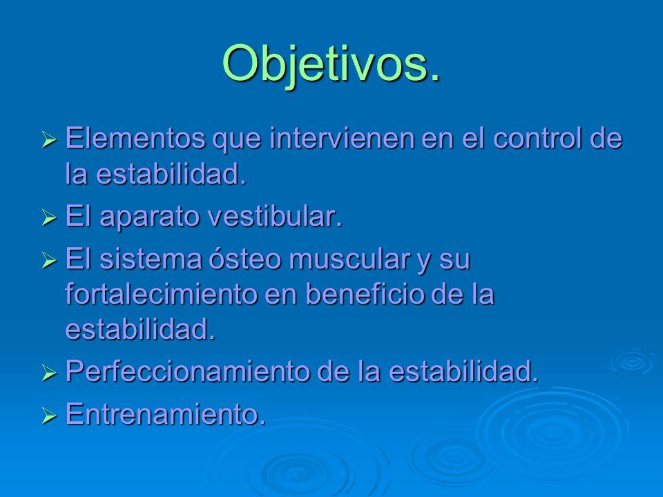 Objetivos. Elementos que intervienen en el control de la estabilidad.