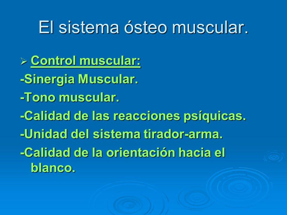 El sistema ósteo muscular. Control muscular: Control muscular: -Sinergia Muscular. -Tono muscular. -Calidad de las reacciones psíquicas. -Unidad del s