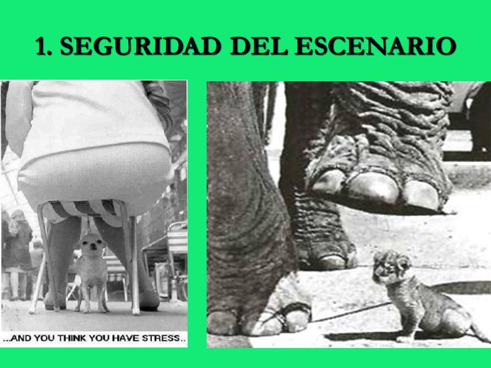1. SEGURIDAD DEL ESCENARIO