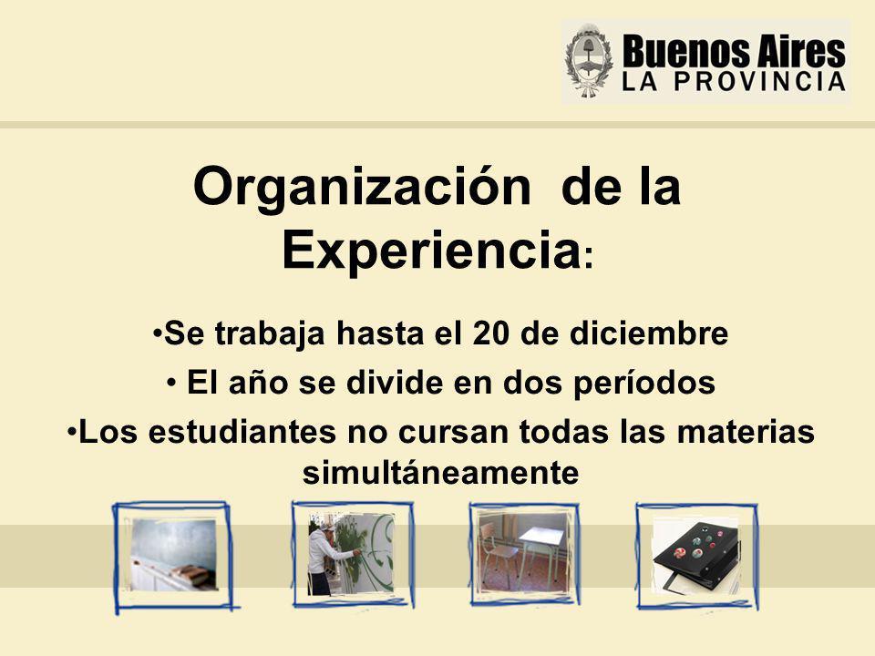 Organización de la Experiencia : Se trabaja hasta el 20 de diciembre El año se divide en dos períodos Los estudiantes no cursan todas las materias simultáneamente