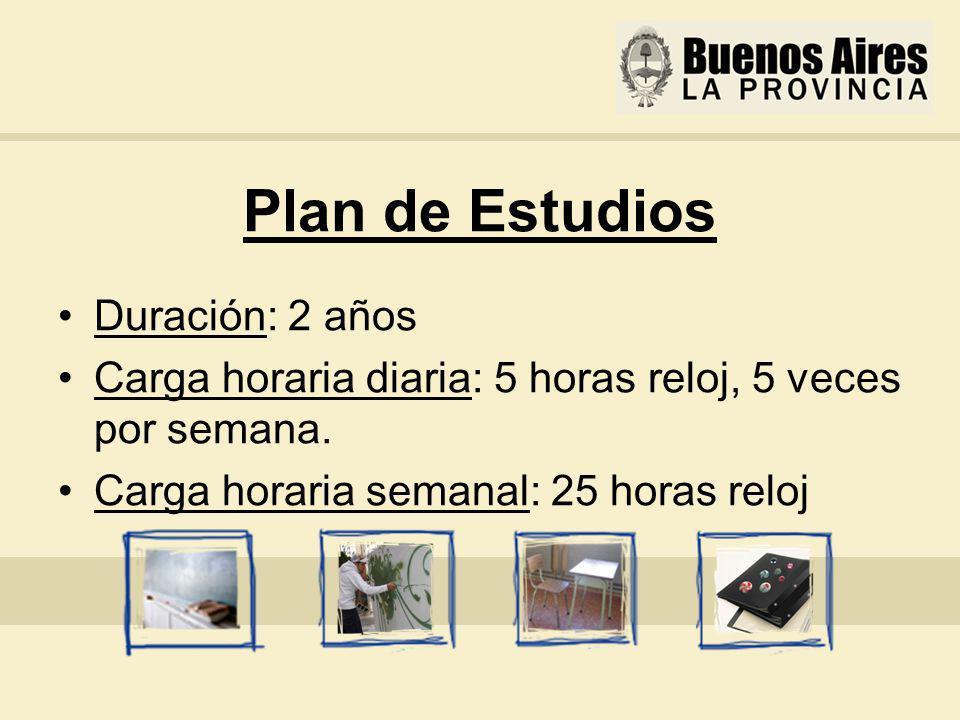 Plan de Estudios Duración: 2 años Carga horaria diaria: 5 horas reloj, 5 veces por semana.
