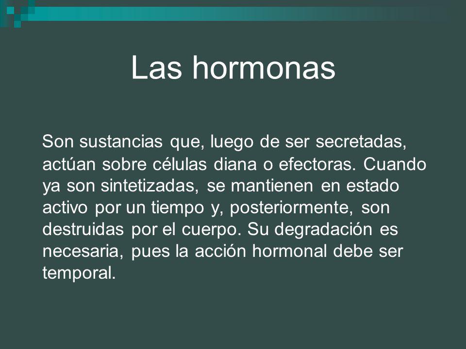 Las hormonas Son sustancias que, luego de ser secretadas, actúan sobre células diana o efectoras. Cuando ya son sintetizadas, se mantienen en estado a