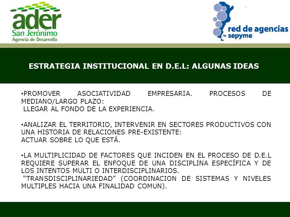 ESTRATEGIA INSTITUCIONAL EN D.E.L: ALGUNAS IDEAS Santa Fe, abril de 2007 PROMOVER ASOCIATIVIDAD EMPRESARIA. PROCESOS DE MEDIANO/LARGO PLAZO: LLEGAR AL