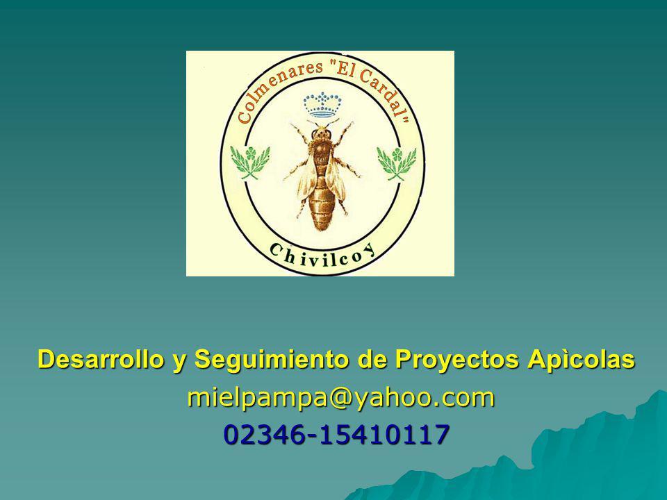 Desarrollo y Seguimiento de Proyectos Apìcolas mielpampa@yahoo.com mielpampa@yahoo.com02346-15410117