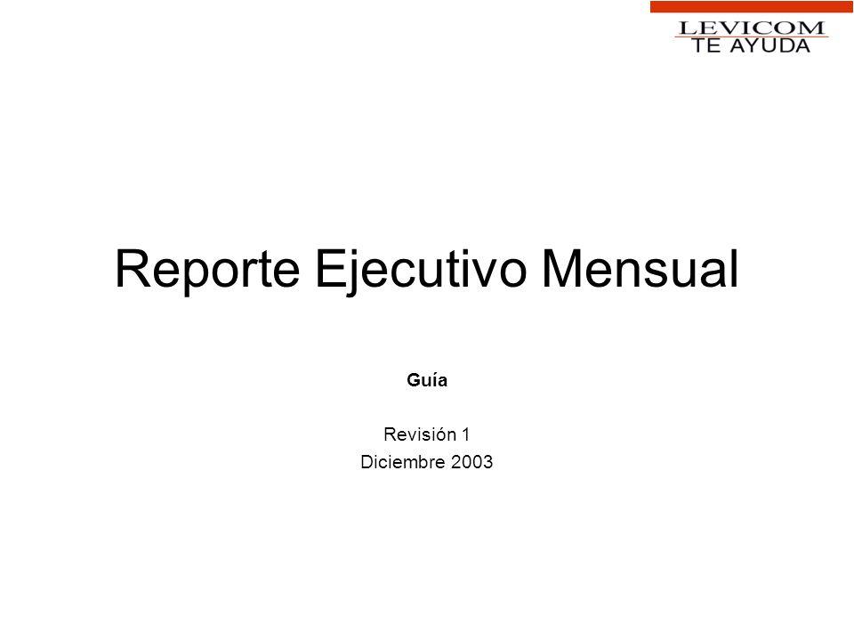Reporte Ejecutivo Mensual Guía Revisión 1 Diciembre 2003