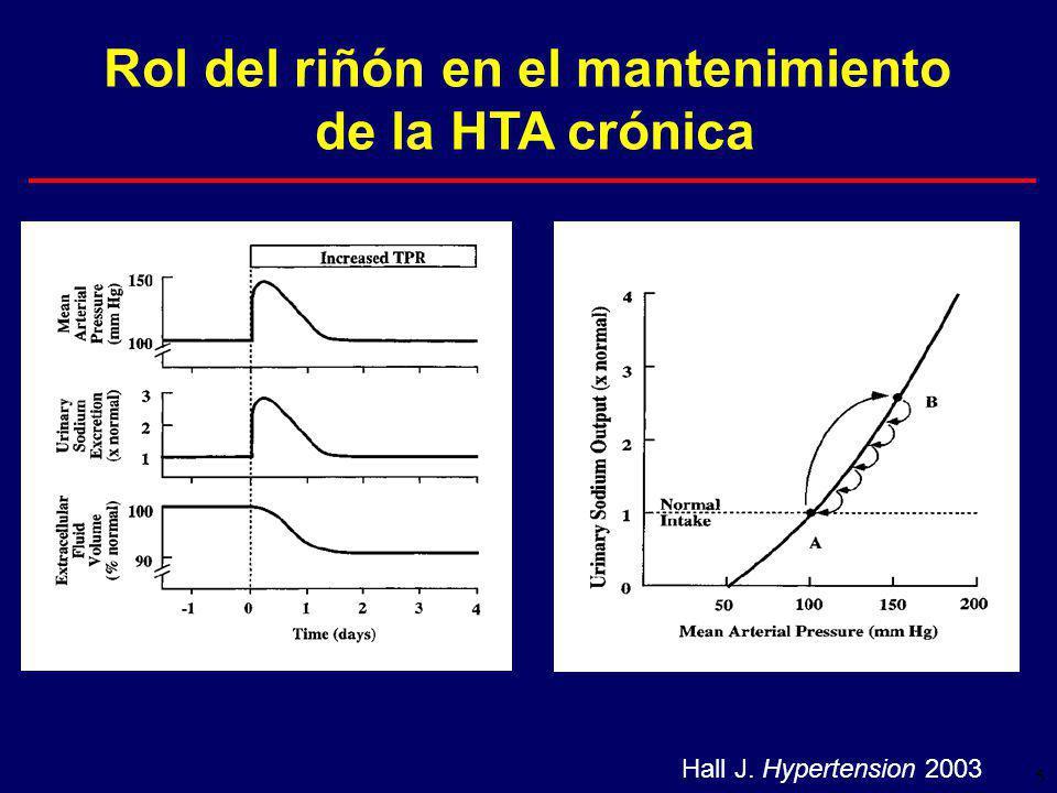 5 Rol del riñón en el mantenimiento de la HTA crónica Hall J. Hypertension 2003