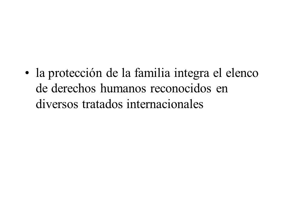 la protección de la familia integra el elenco de derechos humanos reconocidos en diversos tratados internacionales