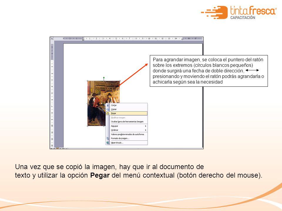 Una vez que se copió la imagen, hay que ir al documento de texto y utilizar la opción Pegar del menú contextual (botón derecho del mouse). Para agrand