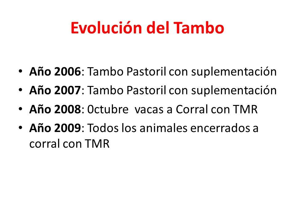 Evolución del Tambo Año 2006: Tambo Pastoril con suplementación Año 2007: Tambo Pastoril con suplementación Año 2008: 0ctubre vacas a Corral con TMR A