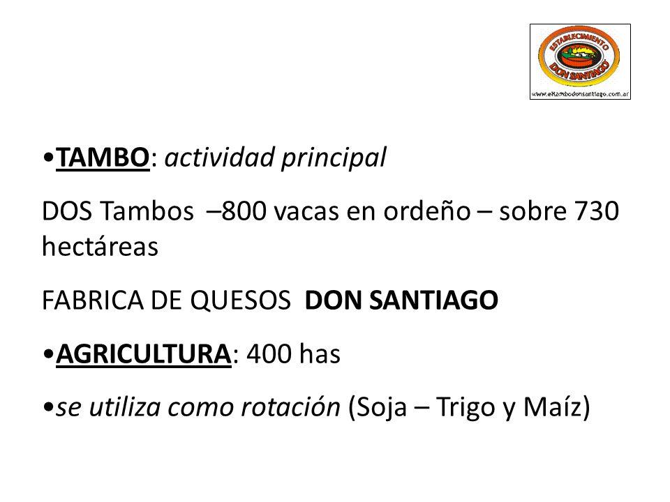 TAMBO: actividad principal DOS Tambos –800 vacas en ordeño – sobre 730 hectáreas FABRICA DE QUESOS DON SANTIAGO AGRICULTURA: 400 has se utiliza como r