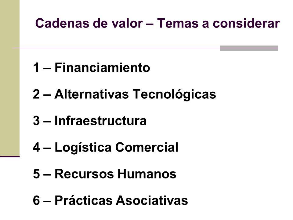 Cadenas de valor – Temas a considerar 1 – Financiamiento 2 – Alternativas Tecnológicas 3 – Infraestructura 4 – Logística Comercial 5 – Recursos Humanos 6 – Prácticas Asociativas
