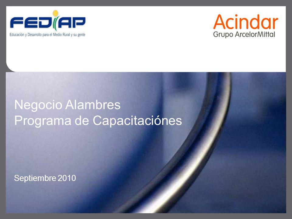Negocio Alambres Programa de Capacitaciónes Septiembre 2010