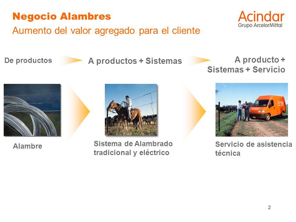 2 Negocio Alambres Aumento del valor agregado para el cliente Alambre De productos Sistema de Alambrado tradicional y eléctrico A productos + Sistemas