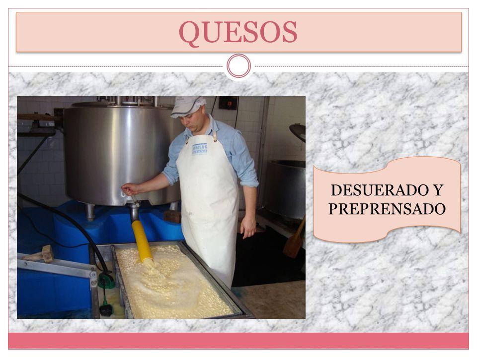 ARMADO DE QUESOS MOLDEADO